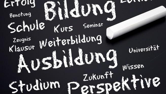Fallstudien: Ein bewährtes Lern- und Bildungsinstrument mit Praxisnähe